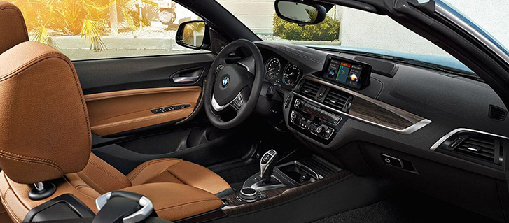 2019 BMW 2 Series 230i Convertible Technology