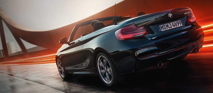 2019 BMW 2 Series 230i Convertible chassis