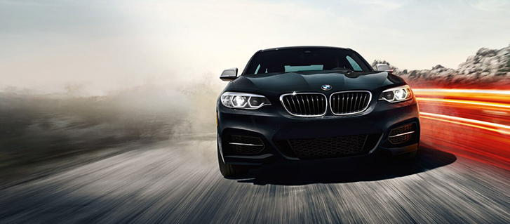 2019 BMW 2 Series 230i Coupe safety