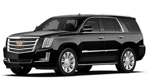 2015 Cadillac Escalade For Sale in Hamilton