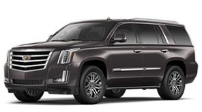 2016 Cadillac Escalade For Sale in Hamilton