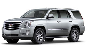 2017 Cadillac Escalade For Sale in Greenville