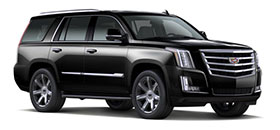 Escalade Luxury