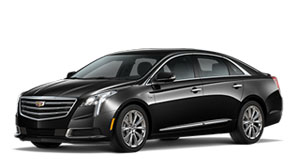 2019 Cadillac XTS Sedan For Sale in Hamilton