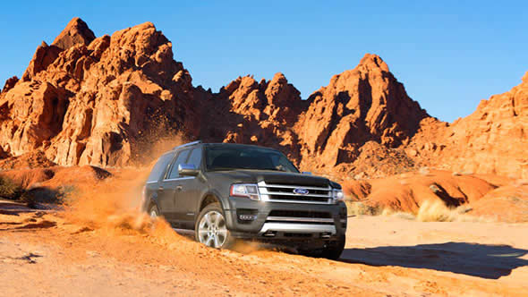 2015 Ford Expedition appearance