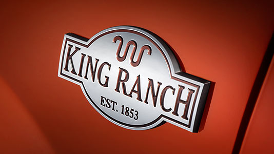 ford expedition king ranch in north hampton | rockingham county