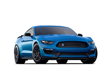 2019 Ford Mustang Shelby GT350 in Franklin