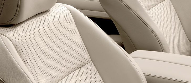 Leather Interior Trim
