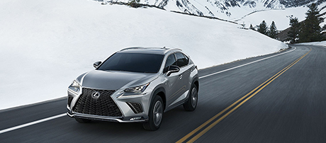 2019 Lexus NX Hill-start Assist Control