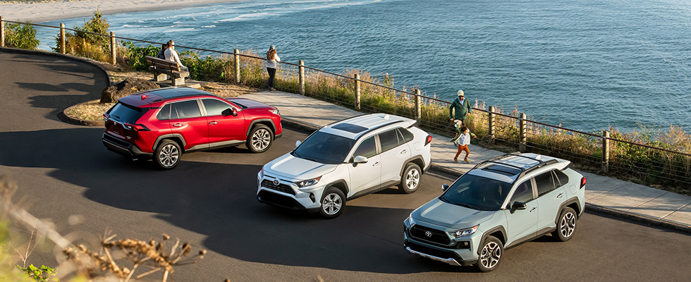 2019 Toyota RAV4 Safety Main Img
